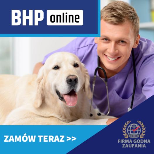 Kurs BHP dla lekarzy weterynarii ONLINE