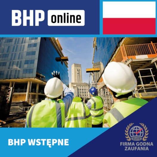 Szkolenie BHP wstępne ONLINE – budownictwo i serwis – PL