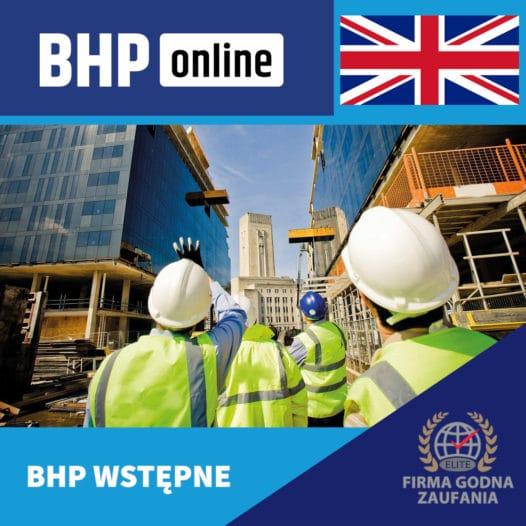 Szkolenie BHP wstępne ONLINE – stanowiska robotnicze – język angielski