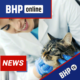 news nowe szkolenie bhp asystent weterynarza online