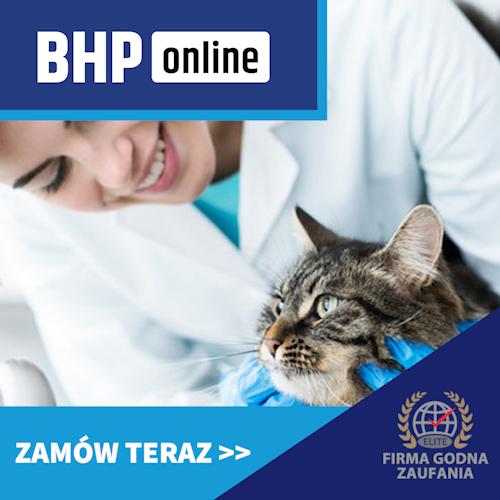 Szkolenie okresowe BHP dla asystentów lekarzy weterynarii ONLINE