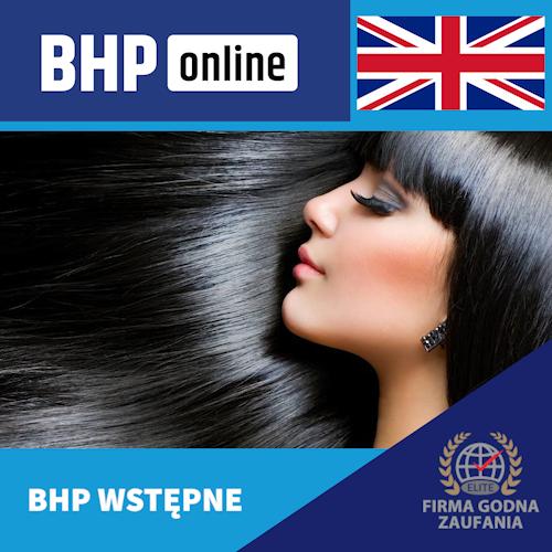 Szkolenie BHP wstępne ONLINE dla pracowników branży usługowej w języku angielskim