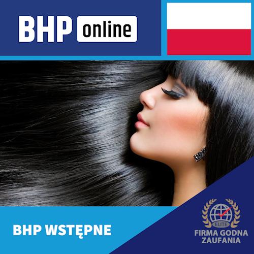 Szkolenie BHP wstępne ONLINE dla pracowników branży usługowej